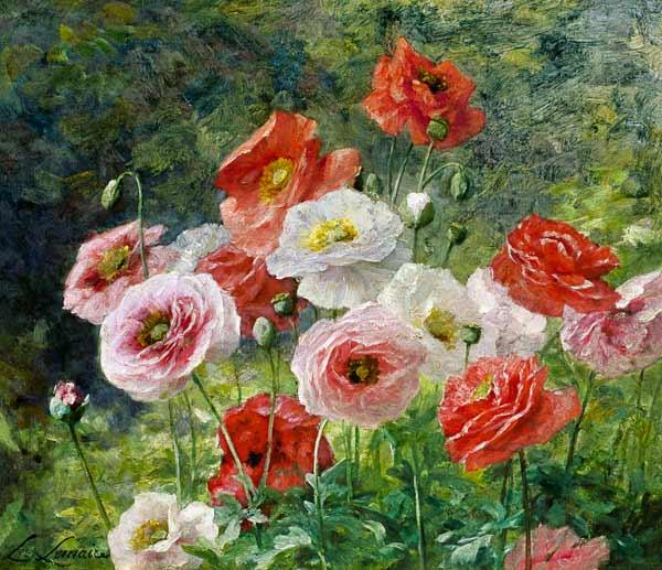 Cluster of Poppies 1884