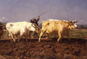 Ploughing in the Nivernais 1850