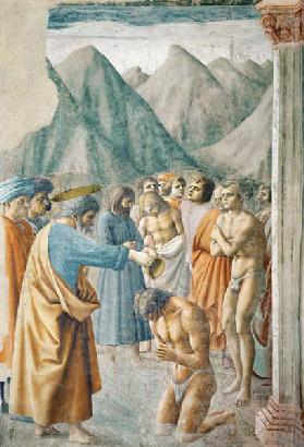 St. Peter Baptising the Neophytes c.1427