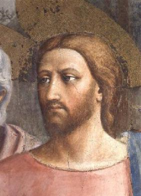 The Tribute Money (Christ's Head - detail of 31642) c.1427 (fresco)