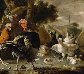 Poultry Yard 1668