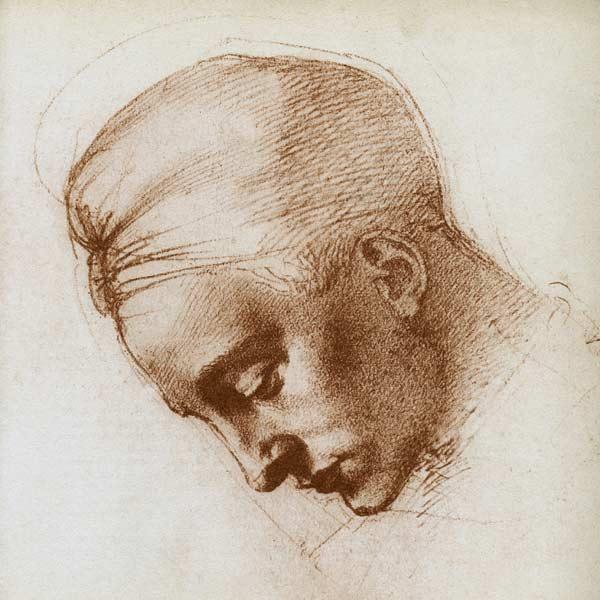 studie zum kopf der leda 152930 - Michelangelo Lebenslauf