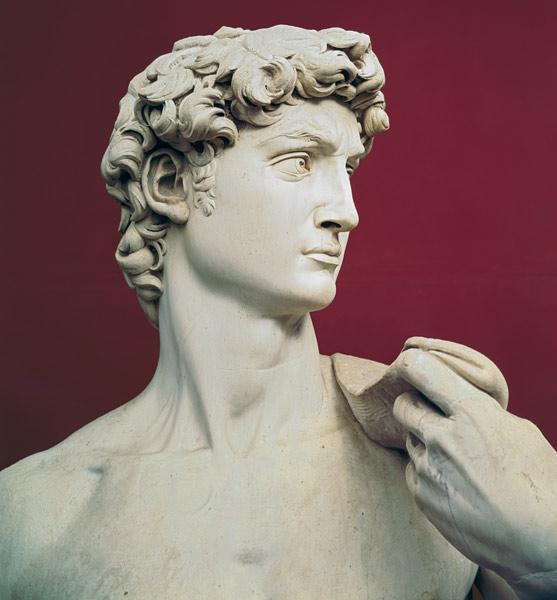 david 1501 04 - Michelangelo Lebenslauf
