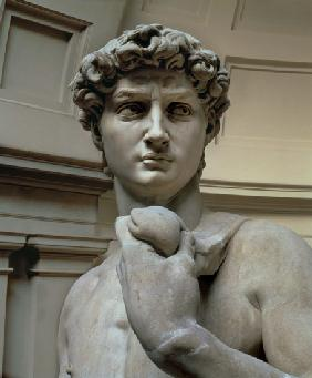 Michelangelo (Buonarroti) - David, head of sculpture by Michelangelo Buonarroti (1475-1564)