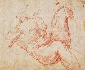 Michelangelo (Buonarroti) - Study of a Nude (red chalk) Inv.1854/5/13/1 Recto (W.10)