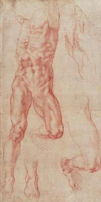 W.13r Study of a male nude, stretching upwards (chalk on paper) 16th