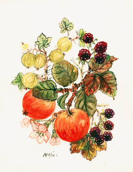 Brambles, Apples and Grapes (w/c on paper)