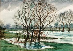 Willows (chalk and watercolour on paper