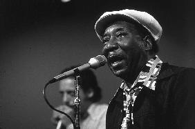 bluesman Muddy Waters on stage in 1982