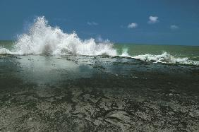 Chorwad known mainly for giant waves breaking against algae-covered rocks (photo)