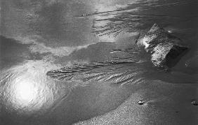 Creepers designs refection of sun and rock on sand, Porbandar (b/w photo)