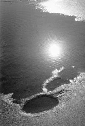 Reflection of sun in sea water, Porbandar (b/w photo)