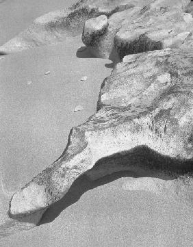 Rock on sand, Porbandar III (b/w photo)