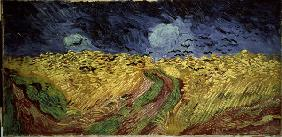 Van Gogh / Corn-field with Crows / 1890