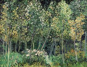 van Gogh / Small forest / July 1890