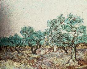 Van Gogh / The Olive Gatherers