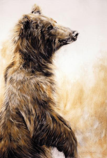 Grizzly Bear 2, 2002 (carbon pencil, charcoal & chalk)