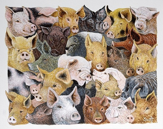 pigs galore acrylic on calico pat scott als kunstdruck oder handgemaltes gem lde. Black Bedroom Furniture Sets. Home Design Ideas
