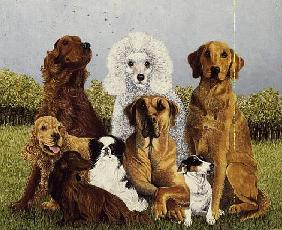 Oliver''s Dogs (oil on canvas)
