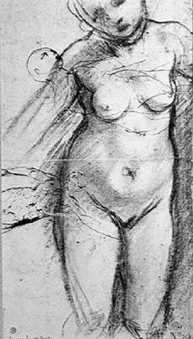 Knee Length Study of a Nude Woman