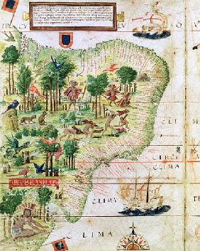 Brazil from the ''Miller Atlas'' Pedro Reinel, c.1519 (detail of 75615)