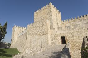 Exterior view of the castle (photo)