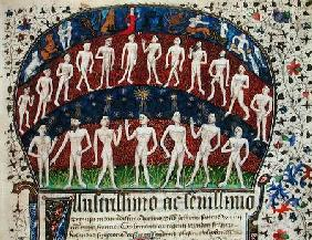 Fol.1 Signs of the zodiac and a group of men, from 'Fisiognomonia' by Rolando