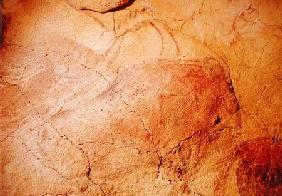 Bison, from the Caves at Altamira c.15000 BC