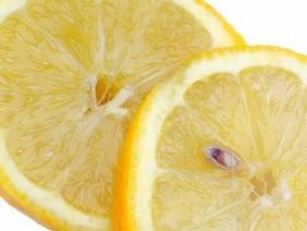 Lemon slices, isolated