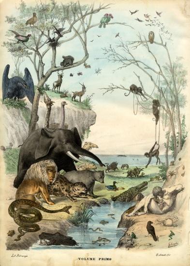 Title Page - Raimundo Petraroja als Kunstdruck oder handgemaltes Gemälde.