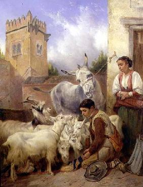 Feeding Goats in the Alhambra 1871