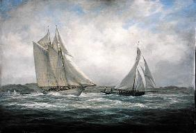 Two Classics: ''Aello Beta'' and ''Marigold'' off the Isle of Wight, 2005 (oil on canvas)