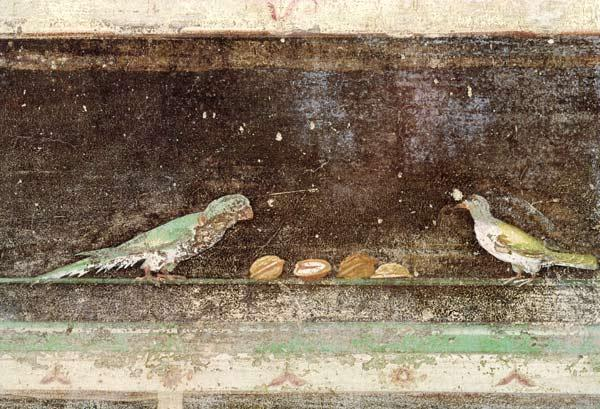 Birds eating nuts, detail from a tablinium decorated with Egyptian-style paintings c.27-14 BC