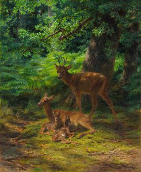 Deer in Repose 1867