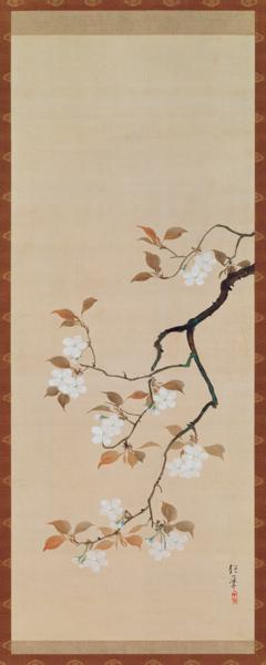 Hanging Scroll Depicting Cherry Blossoms, from A Triptych of the Three Seasons, Japanese, early 19th
