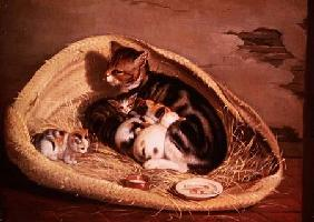 Cat with Her Kittens in a Basket 1797
