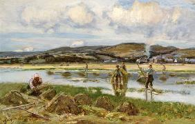 The Reed Gatherers