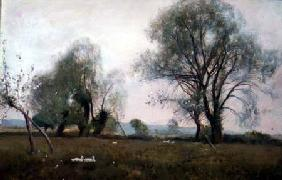 Down in the watermeadows 1893