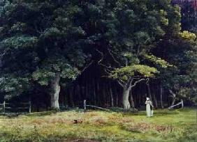 The Wooded Landscape c.1900  on