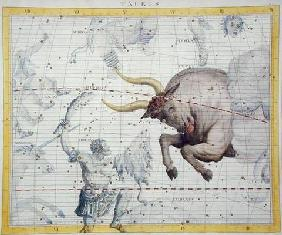 Constellation of Taurus, plate 2 from 'Atlas Coelestis', by John Flamsteed (1646-1710), published in 1910