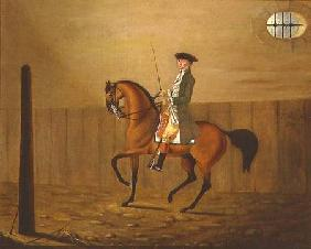 Gentleman on a Bay Horse in a Riding School 1766