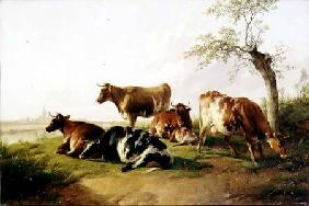 Cattle in a Landscape