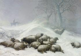 Sheep in a Snowstorm 1881