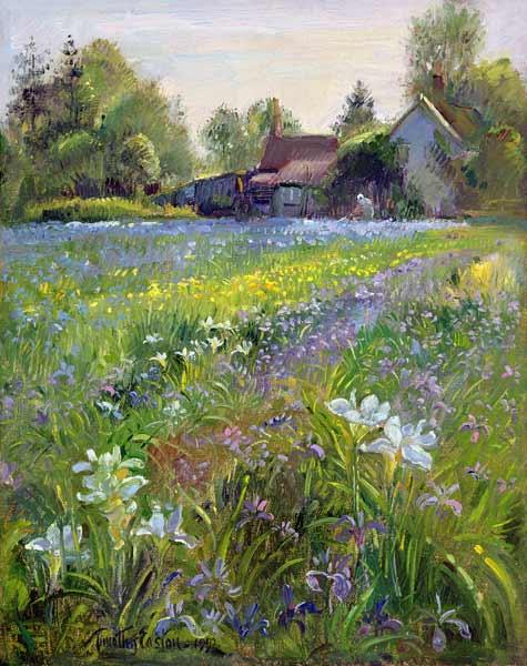 Dwarf Irises and Cottage, 1993  1993