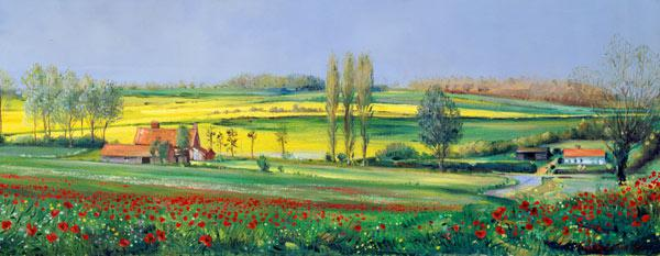 Poppy Field and Poplars