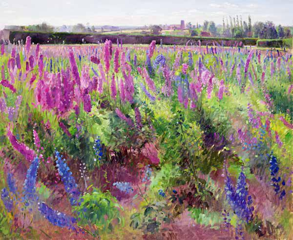 The Delphinium Field, 1991