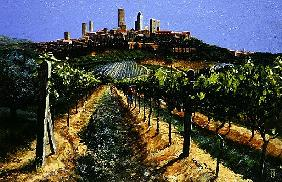 Grape Vines, San Gimignano, Tuscany, 1998 (oil on canvas)