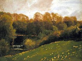 Meadow and Woodland 1895