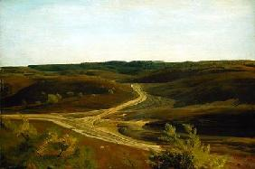 The Moorland near Ehestorf 1868  pape