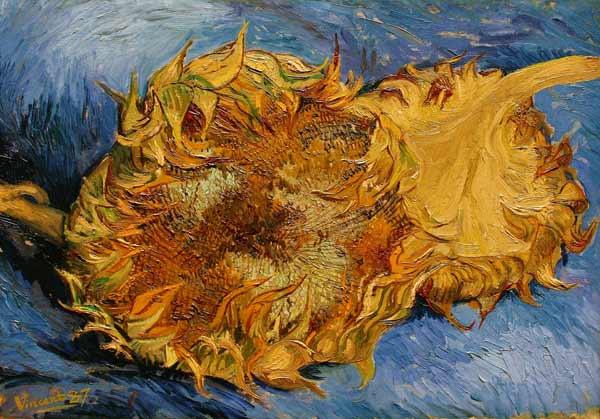 Die Sonnenblumen Vincent Van Gogh Als Kunstdruck Oder Handgemaltes
